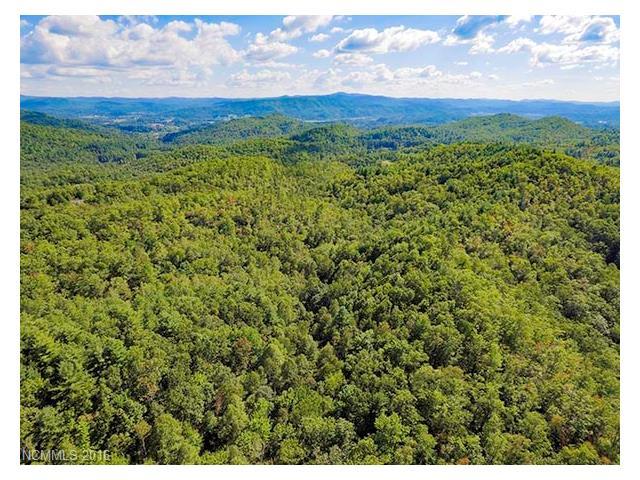 290 Pelletier, Pisgah Forest, NC 28768