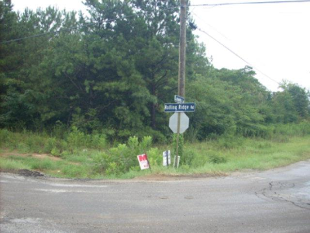 4031 ROLLING RIDGE ROAD, AUBURN, AL 36830