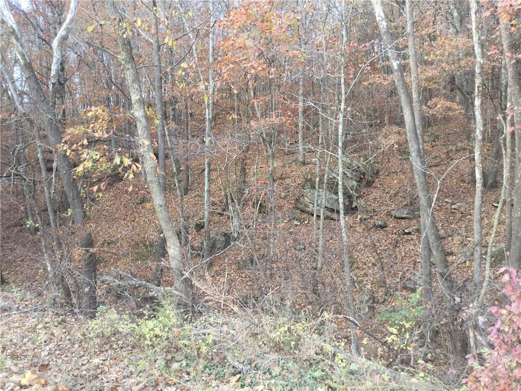 17285 Stout Mountain, Winslow, AR 72774