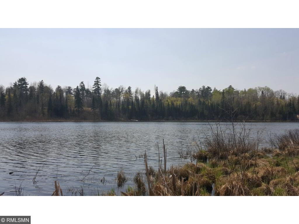 TBD Busties Lake Dr, Effie, MN 56639