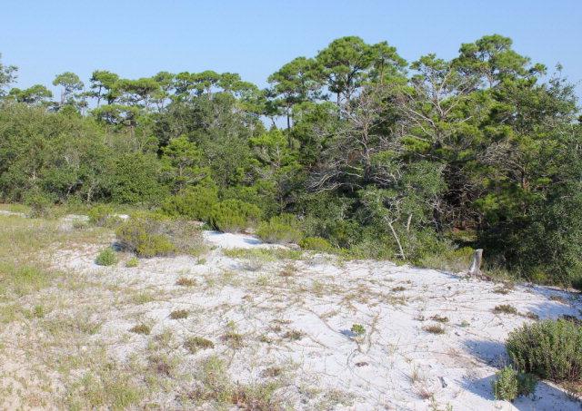 River Road, Orange Beach, AL 36561