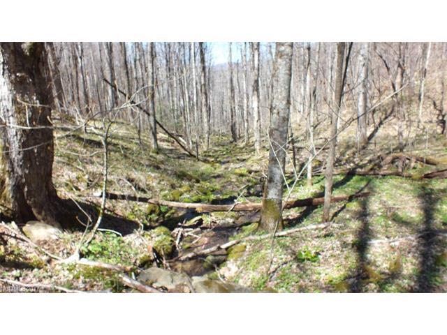 21 acres Beasley Cove, Hot Springs, NC 28743