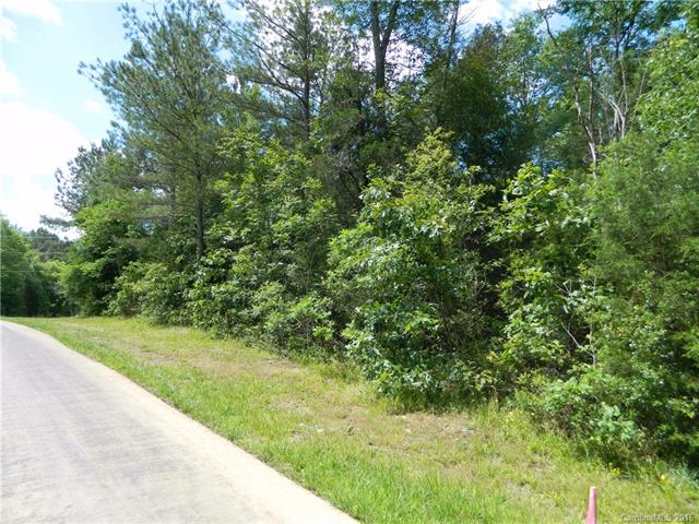 Lot 2 Leaf Lane, Indian Land, SC 29707