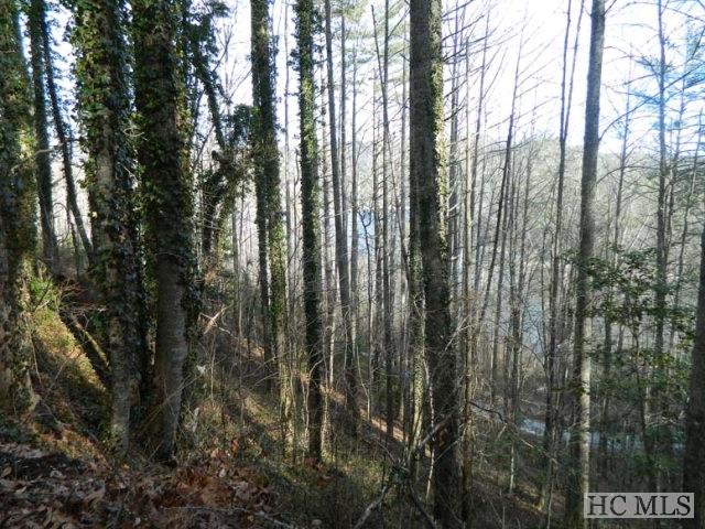 22-25 Wilderness Trail, Cullowhee, NC 28723