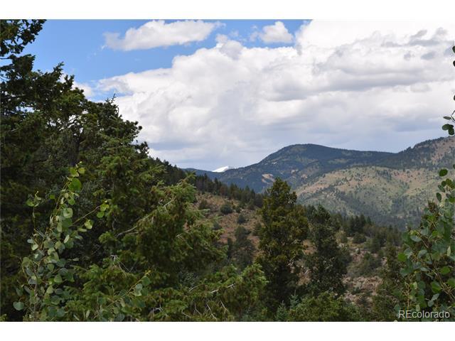 9 Clear Creek Road, Evergreen, CO 80439