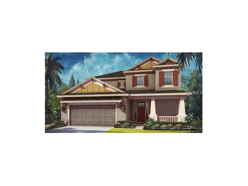 27063 CAROLINA ASTER DRIVE, WESLEY CHAPEL, FL 33544