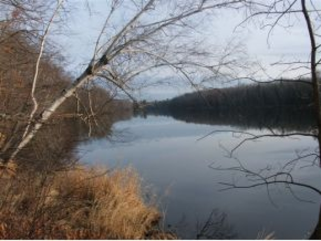 ON WADELL RD, Tomahawk, WI 54487