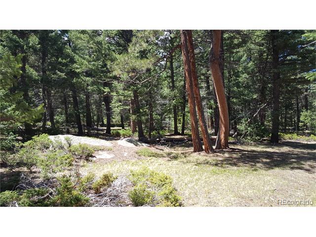8385 Eagle Cliff Road, Conifer, CO 80433