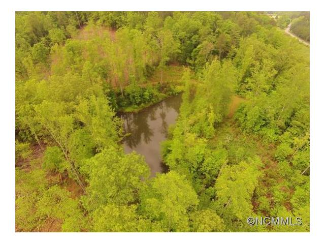 39 Womack Road, Mill Spring, NC 28756