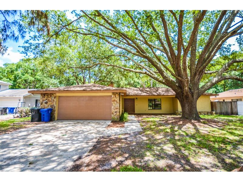 16211 SEPTEMBER DRIVE, LUTZ, FL 33549