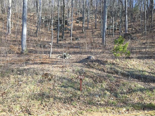 10 Clear Fork Lane 530, Fairview, NC 28730