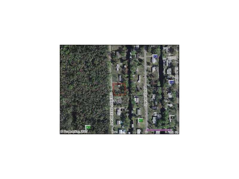 56320 CHERRY TREE ROAD, ASTOR, FL 32102