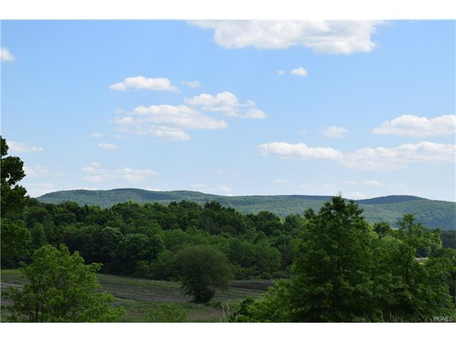 341 LOWER Road, Westtown, NY 10998