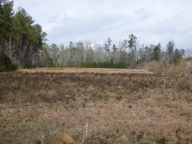 Bethel Rd., Brookhaven, MS 39601