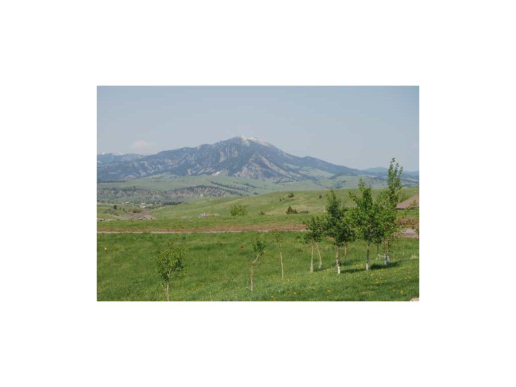 9100 Trooper Trail, Bozeman, MT 59715