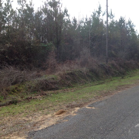 TBD NEBO ROAD, Gloster, MS 39638