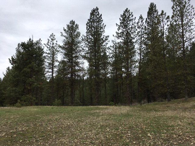 TBD Granite View Road, New Meadows, ID 83654