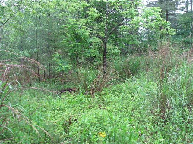 Private, wooed property in a great area, central location with access to Hendersonville, Asheville, and Brevard. The would be a nice place to a summer home or full time Home.