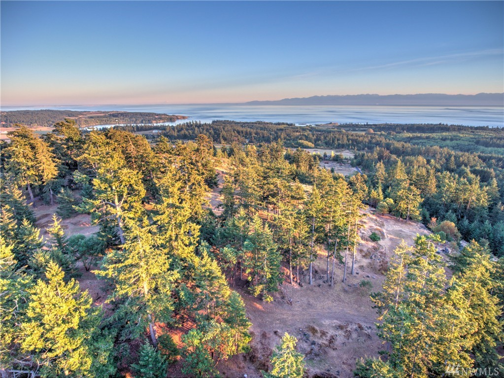 298 Evergreen Lane, San Juan Island, WA 98250