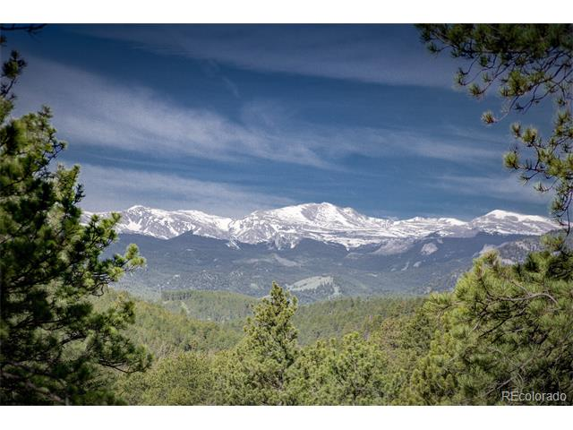 31475 Upper Bear Creek Road, Evergreen, CO 80439
