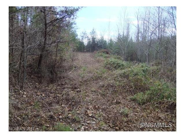 Lot 3 Fibber McGee None 3, Union Mills, NC 28167