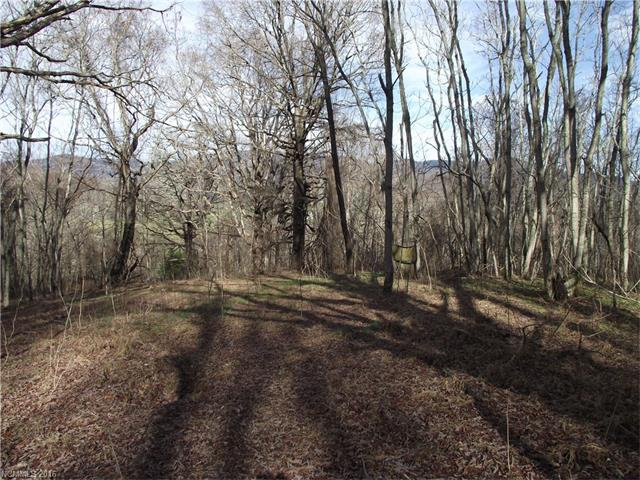0000 Smith Knolls Road, Fairview, NC 28730