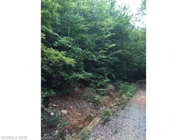 3333 High Top Mountain Road, Leicester, NC 28748