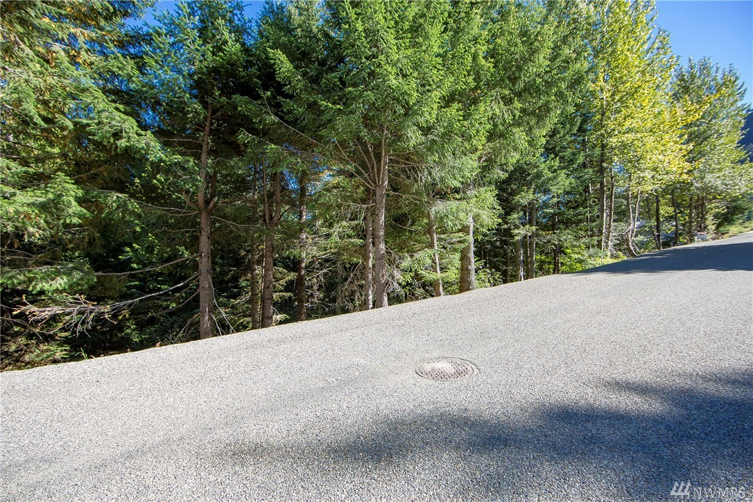 102 Snoqualmie Dr, Snoqualmie Pass, WA 98068