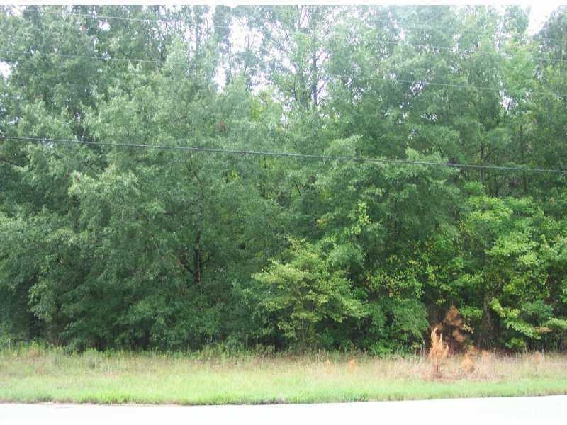 1388 HWY 124 .44, Snellville, GA 30078
