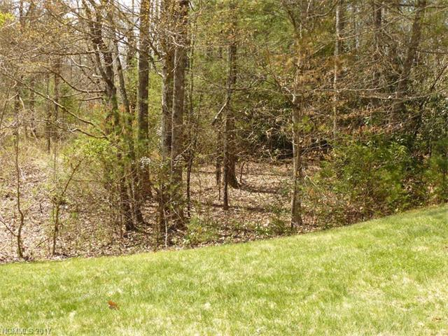 14 Blueberry Hill 14, Brevard, NC 28712