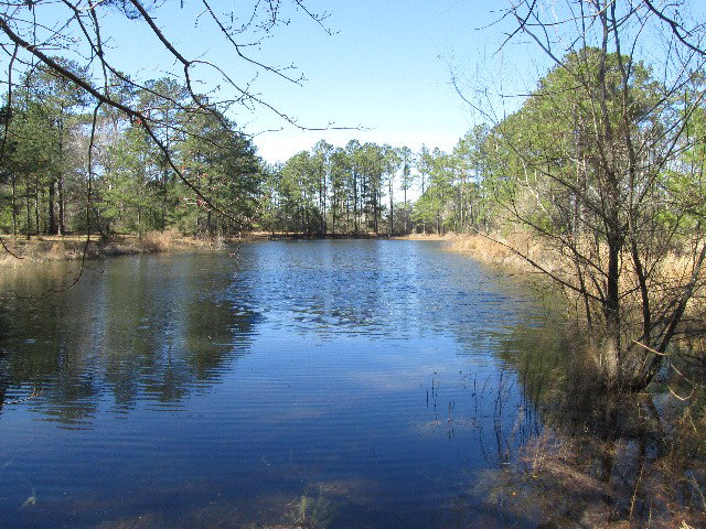 3303 Hwy 13 South, Columbia, MS 39429