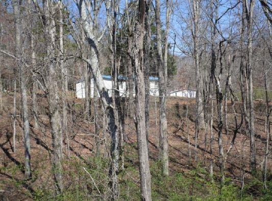 59 D County Rd 100, Decatur, TN 37322
