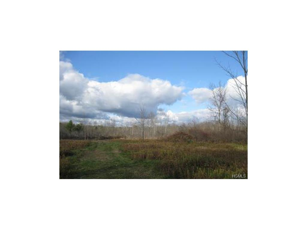 County Route 410, Berne, NY 12023