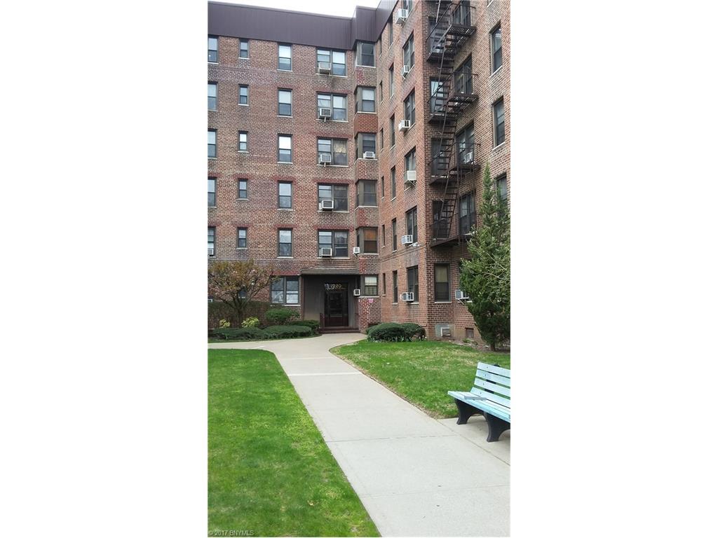 2220 Burnett St 1F, Brooklyn, NY 11229