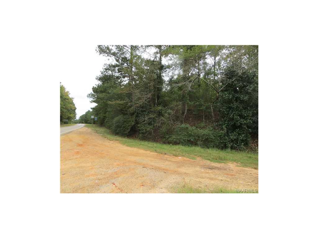 HANK WILLIAMS Drive, Mckenzie, AL 36456