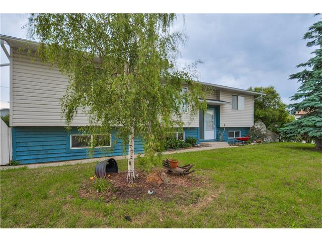 321 Nelson Road, Carseland, AB T0J 0M0