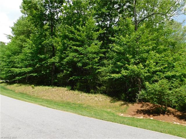 Great opportunity to get a lot on the 18th fairway of the #1 rated year round golf course in WNC! This lot is in Champion Hills, a Tom Fazio designed golf course only minutes from downtown Hendersonville shops and restaurants. This lot is close to the clubhouse. Come see where you are building your new home!