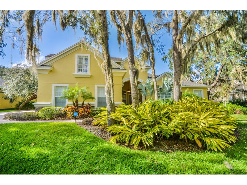5713 TERNWATER PLACE, LITHIA, FL 33547