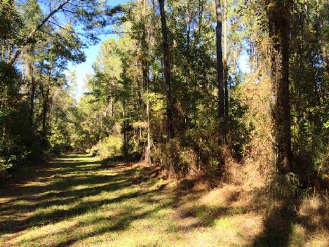 870 Green Swamp Road, Brunswick, GA 31523