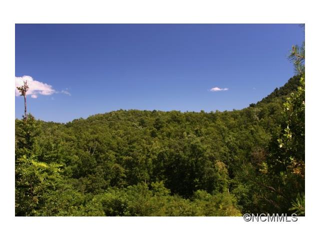 99999 Major Mountain Road, Black Mountain, NC 28711