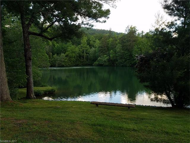 A1 Allison Creek Trail A1, Brevard, NC 28712