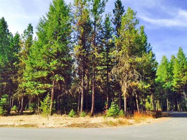 Lot 6 Whispering Pines Court, McCall, ID 83638