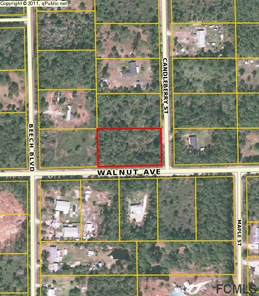 5364 Walnut Avenue, Bunnell, FL 32137