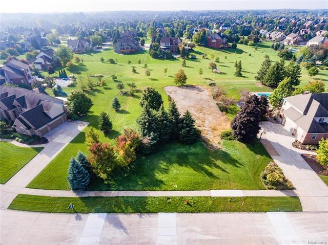 12538 Howland Park Dr DR, Plymouth Twp, MI 48170