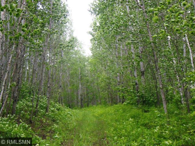xx Cloquet Trail, Saginaw, MN 55779