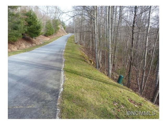 Beautiful lot with some great potential to build your dream home. Located in a terrific community of Champion Hills. Near the end of the cul-de-sac street with lots of possibilities. This 1.01 acre lot has wooded views and can see the outline of the mountain ridge. It has a Tom Fazio golf course Rated #6 of all golf courses in NC, and just 8 minutes to downtown Hendersonville.