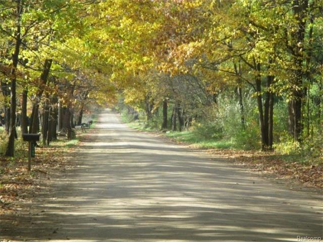 tbd MERWIN Road, Elba Twp, MI 48446