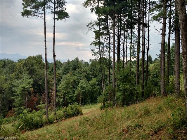 Bear Tree Court 175, Hendersonville, NC 28792