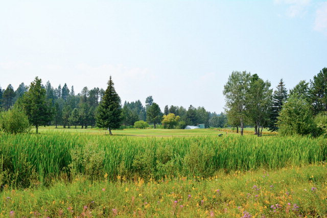 lot 67 Brundage View Court, McCall, ID 83638