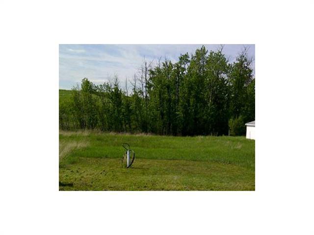 179 buffalo Lane, Rural Stettler County, AB T0C 2L0